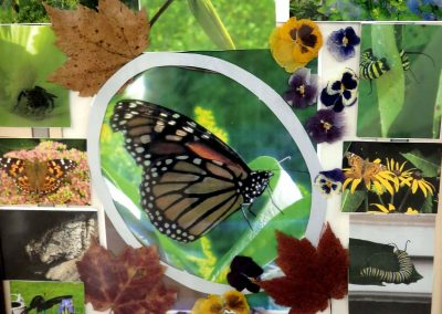 Fall Art Show Butterflies